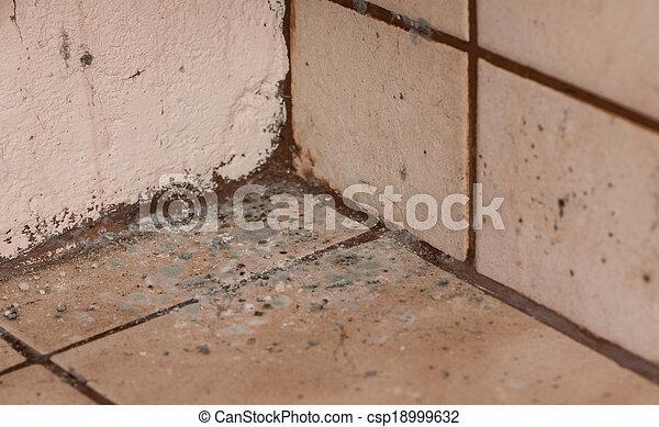 Mildewed Walls - csp18999632