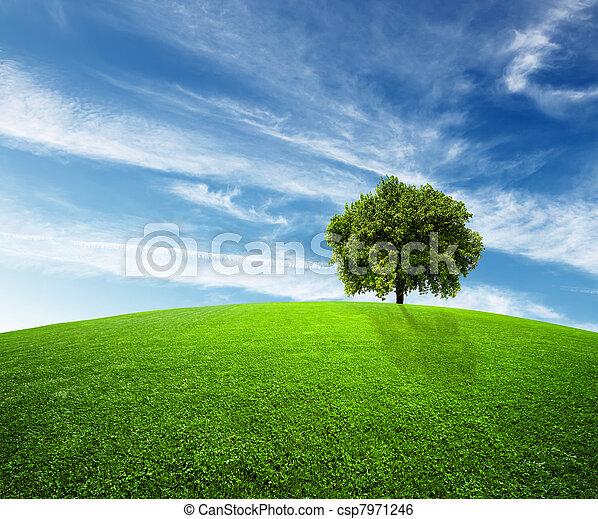 milieu, groene - csp7971246