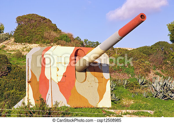 Military Cannon - csp12508985