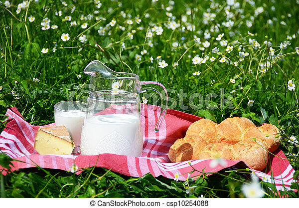 Milk, cheese and bread served at a picnic on Alpine meadow, Switzerland - csp10254088