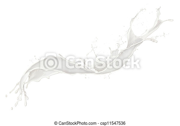 Milk splash, isolated on white background  - csp11547536