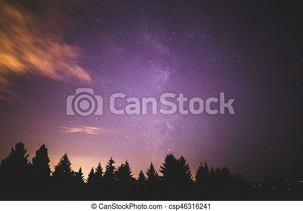 Milky Way Over Forest Trees - csp46316241