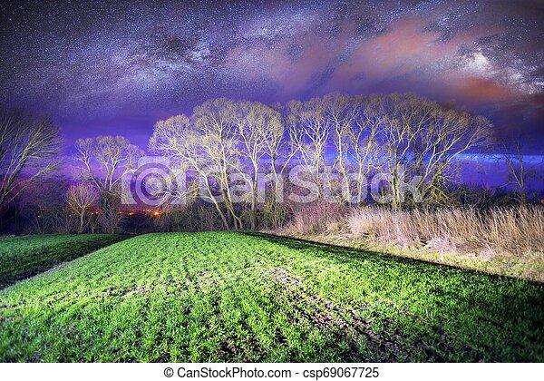 Milky Way over the field. - csp69067725