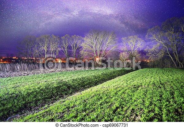 Milky Way over the field. - csp69067731