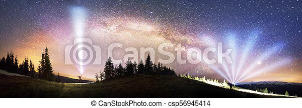 Milky Way over the Fir-trees - csp56945414