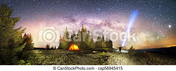 Milky Way over the Fir-trees - csp56945415