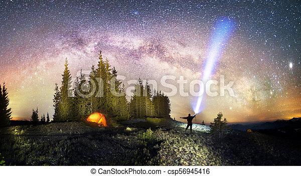 Milky Way over the Fir-trees - csp56945416