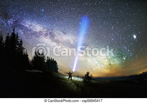 Milky Way over the Fir-trees - csp56945417