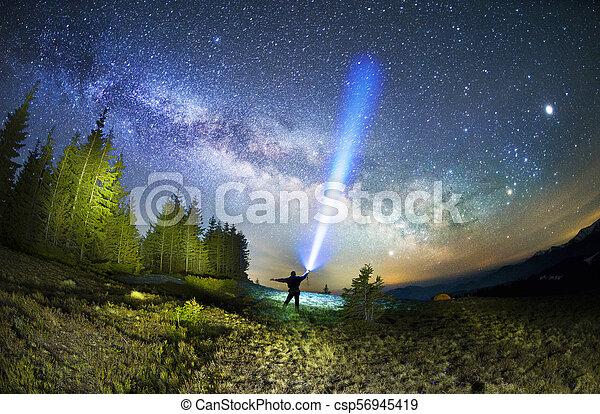 Milky Way over the Fir-trees - csp56945419