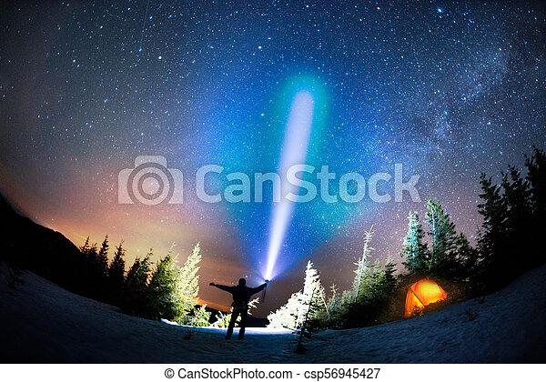 Milky Way over the Fir-trees - csp56945427