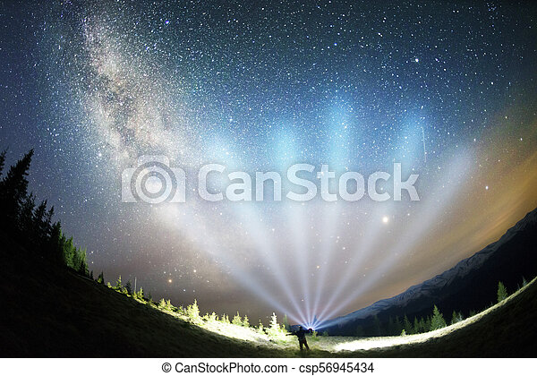 Milky Way over the Fir-trees - csp56945434