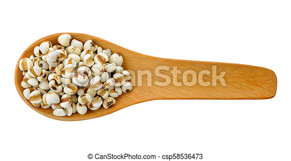 Millet in wood spoon isolated on white background - csp58536473