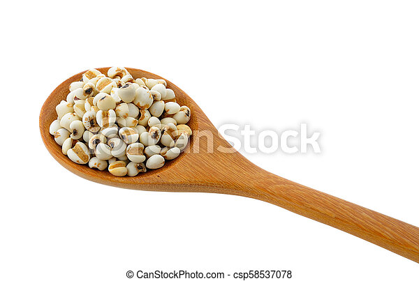 Millet in wood spoon isolated on white background - csp58537078