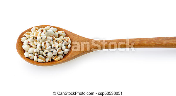 Millet in wood spoon isolated on white background - csp58538051