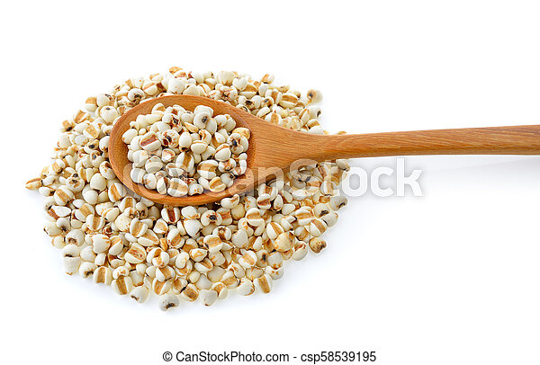 Millet in wood spoon isolated on white background - csp58539195