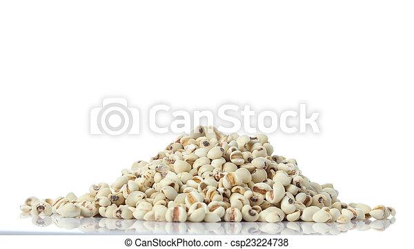 Millet on white background - csp23224738