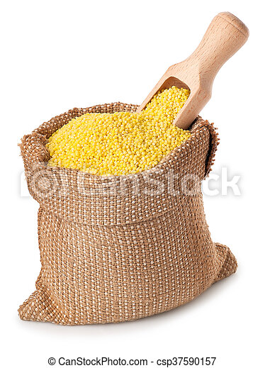 millet with scoop in sack isolated on white background - csp37590157