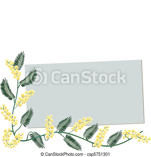 Mimosa border - Greeting card - csp5751301