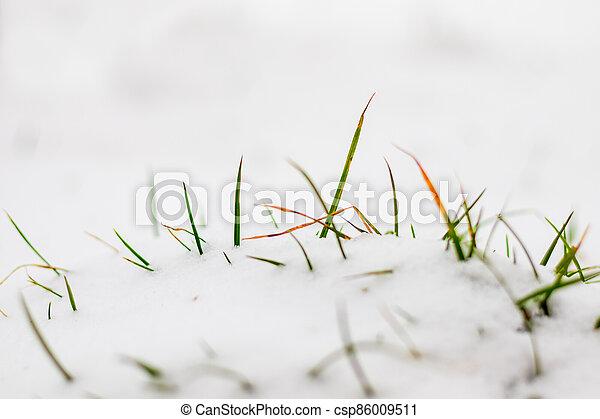 min.čas i příč.min. od stick, pod, nezkušený, aut, pastvina, sněžit - csp86009511