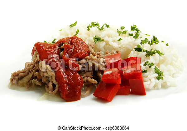 Minced meat with rice on a white plate - csp6083664