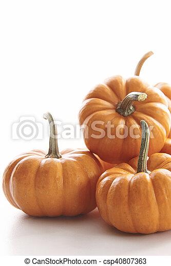 Mini pumpkins on white - csp40807363