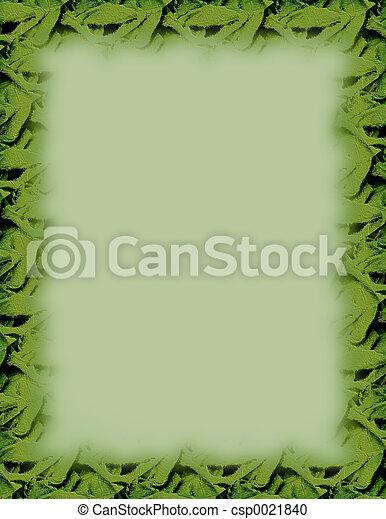 Mint Border - csp0021840