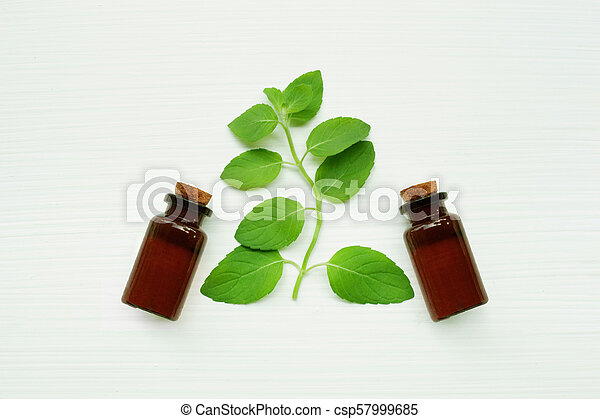 Mint Essential Oil in a Glass Bottle with leaves. - csp57999685
