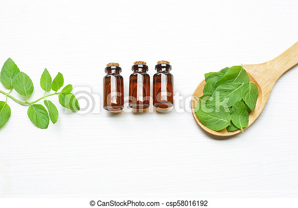 Mint Essential Oil in a Glass Bottle with leaves. - csp58016192