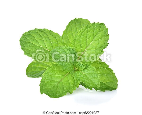 mint leaf on white background - csp62221027