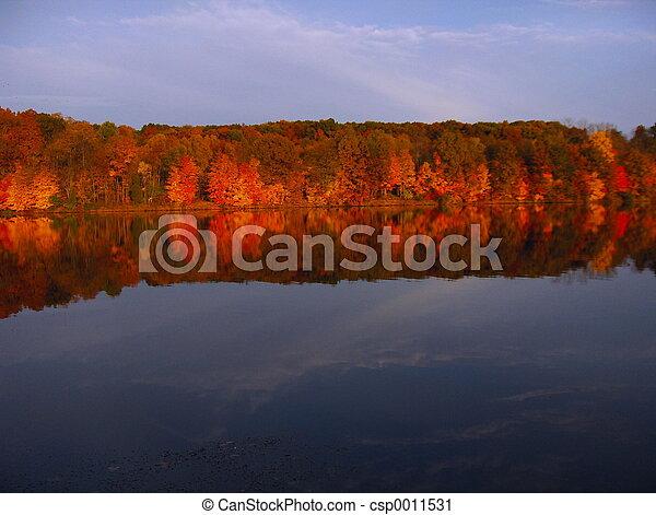 Mirror Image - csp0011531