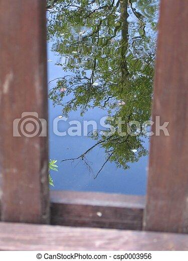 Mirrored Tree - csp0003956