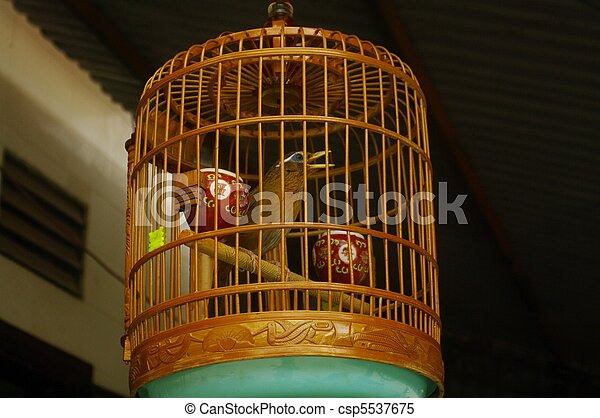 mis cage oiseau beau rassemblement avoir chant images de stock rechercher des photos. Black Bedroom Furniture Sets. Home Design Ideas