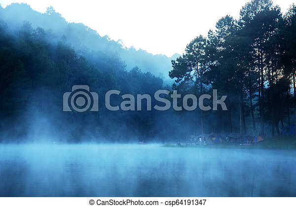 Mist in the morning of nature. - csp64191347