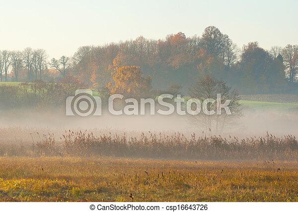 Mist - csp16643726