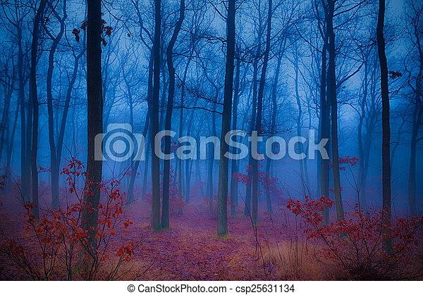Bosque misterioso - csp25631134