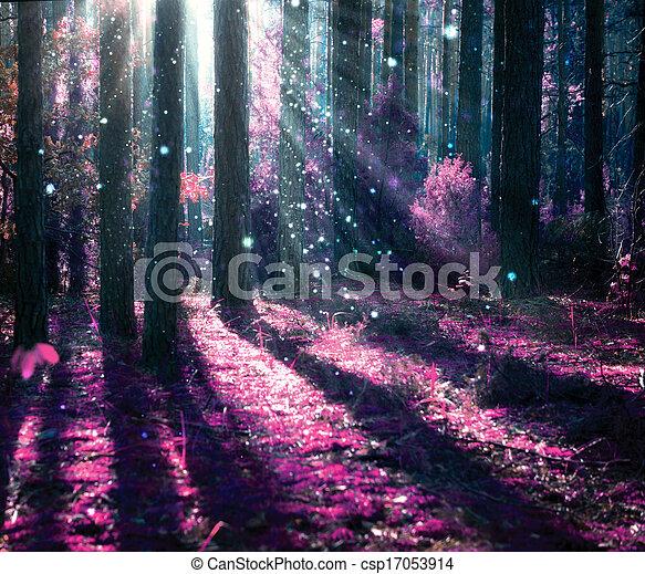 misterioso, fantasía, viejo, bosque, paisaje. - csp17053914