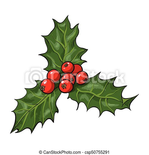mistletoe branch with leaves and berries csp50755291 - Mistletoe Christmas Decoration