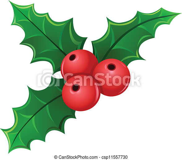 mistletoe christmas holly berry mistletoe rh canstockphoto com mistletoe vector icon mistletoe vector free