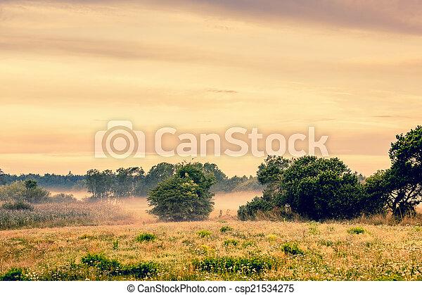 Misty countryside landscape - csp21534275
