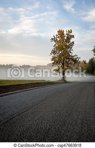 misty countryside landscape with asphalt wavy road in latvia - csp47663918