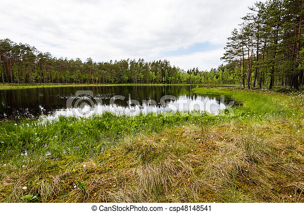 misty countryside landscape with lake in latvia - csp48148541