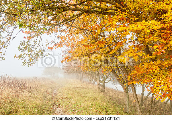 misty countryside - csp31281124