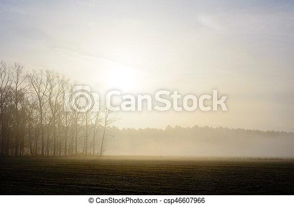 Misty countryside sunrise - csp46607966