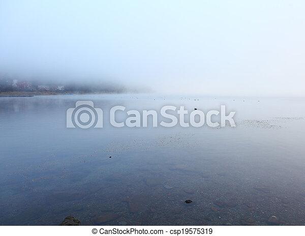 Misty lake - csp19575319