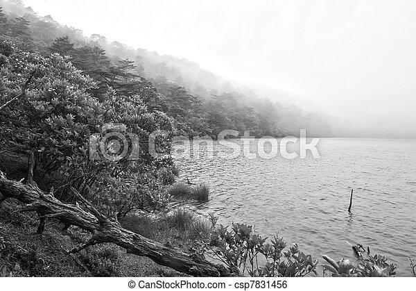 Misty lake - csp7831456