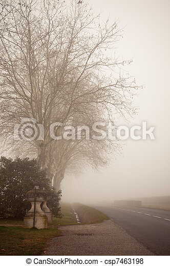 Misty Landscape - II - csp7463198