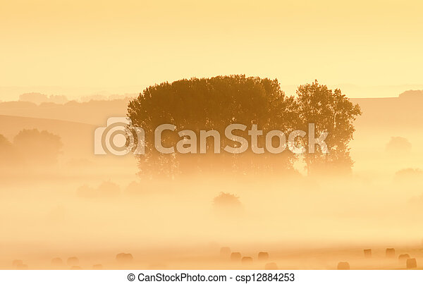 misty landscape - csp12884253