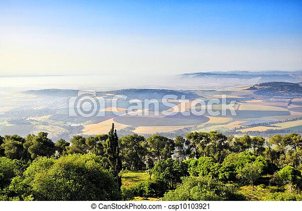Misty landscape - csp10103921
