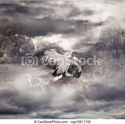 Misty Landscape - csp10811743