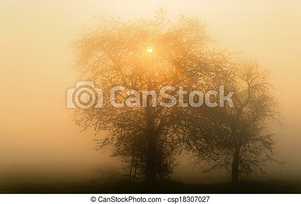 misty landscape - csp18307027